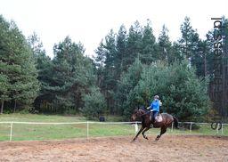 <p>Dziewczyna z Pasją do jazdy konnej i miłością do zwierząt.</p>