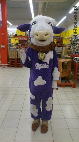 <p>promocja - milka - carrefour</p>